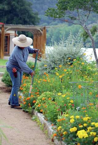 The gardens are well-tended at Lake Austin Spa Resort.  Renowned Texas gardener Trisha Shirey serves as director of flora and fauna. Photo: Melissa Ward Aguilar