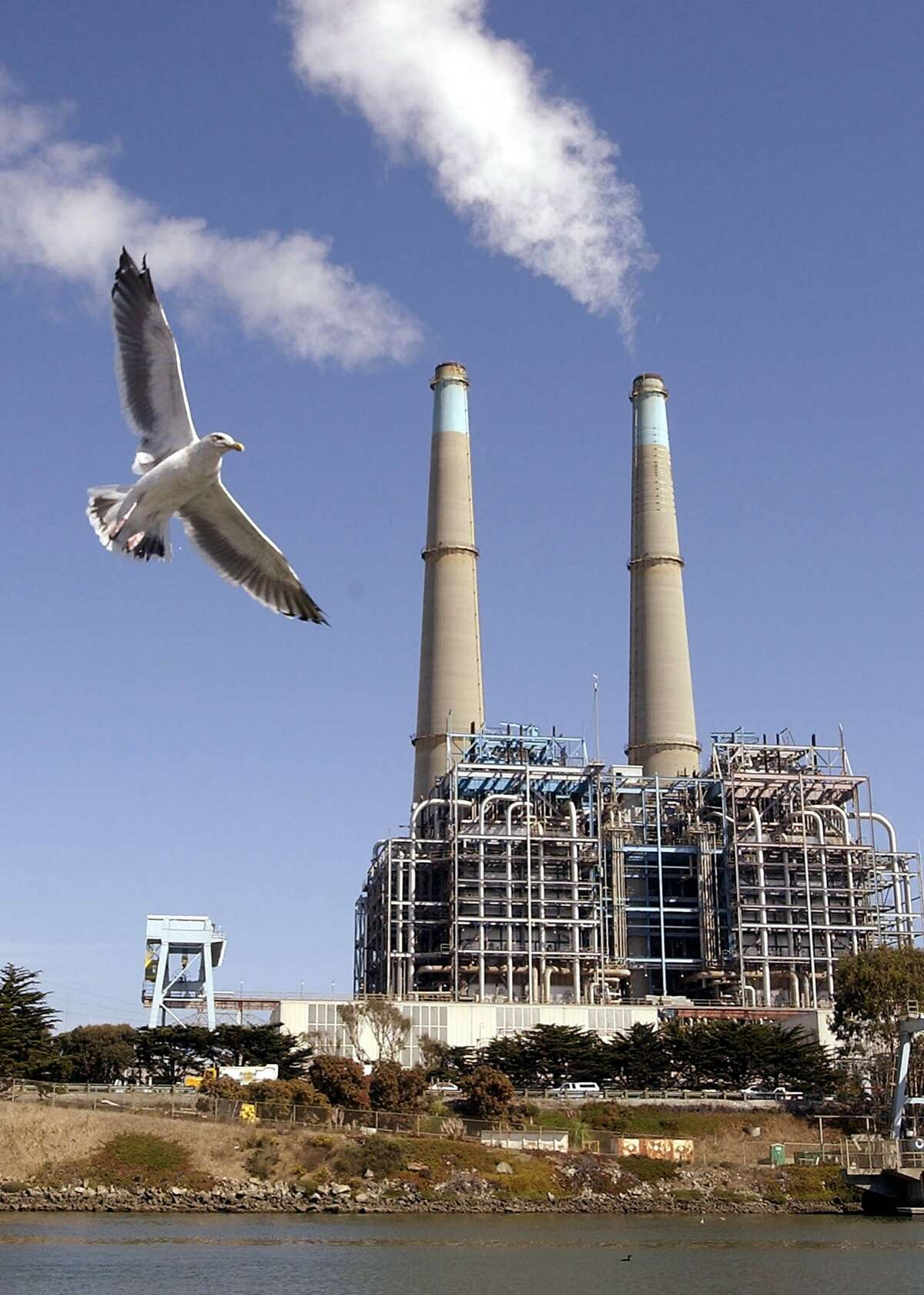 A seagull flies in front of a power plant in Watsonville, Calif., Tuesday, Sept. 17, 2002. The nation's industrial sector, hardest hit by last year's recession, stumbled in August, with production falling for the first time in eight months. Much of the weakness came from a sharp 2.5 percent drop in output at gas and electric utilities. (AP Photo/Paul Sakuma)Ran on: 02-19-2006 Power plants like this one in Watsonville may be subject to limits on the amount of carbon dioxide they can release under a program being considered by state utilities regulators.Ran on: 02-19-2006