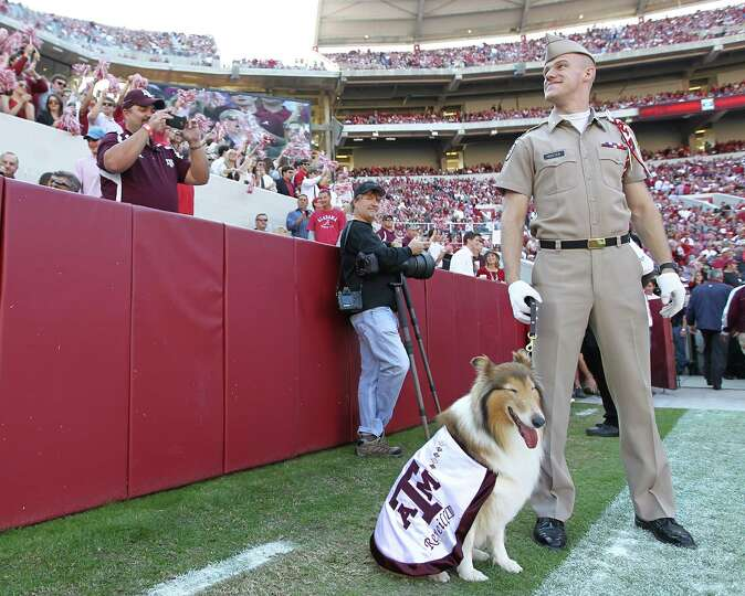 Texas A&M cadet Daylon Koster with Reveille VIII before the start of a college football game at Brya