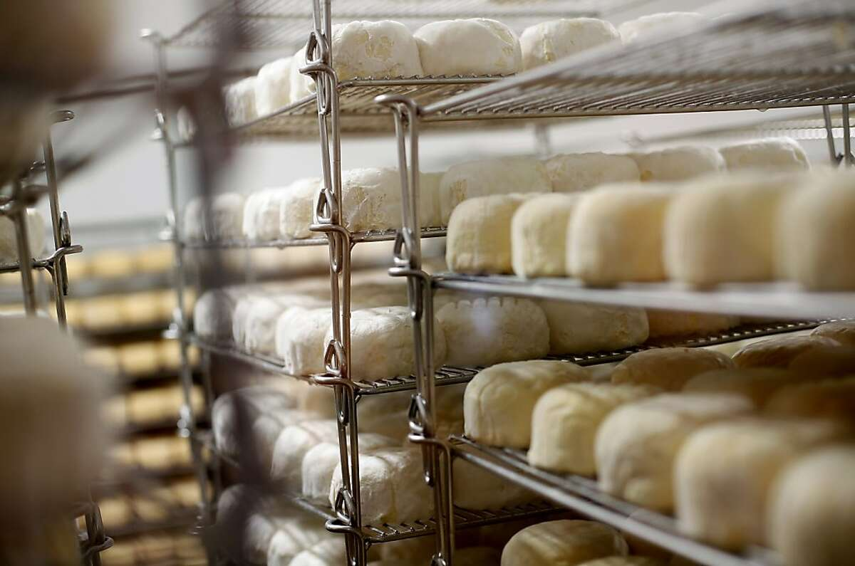 Cowgirl Creamery's Red Hawk cheese in various stages at their original location in Point Reyes Station, Calif., Monday, October 29, 2012.