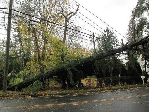 A fallen tree rests on power lines on New Canaan's Old Stamford Road, one of numerous areas of town ravaged by Hurricane Sandy Oct. 31, 2012. Photo: Contributed
