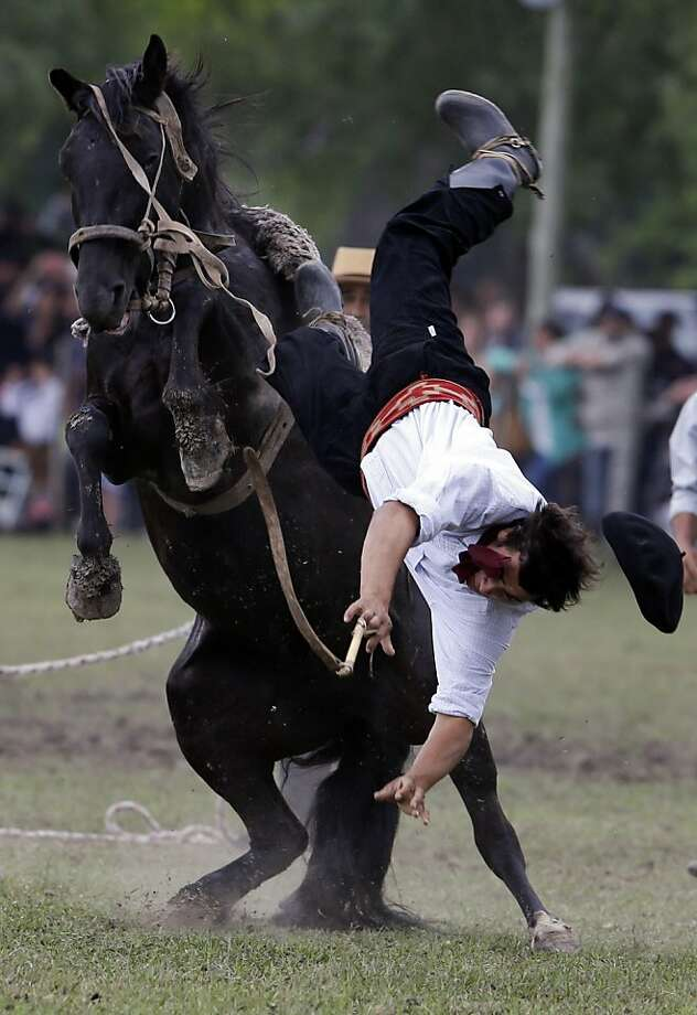 "A man falls from a horse at a rodeo exhibition during the Tradition Day in San Antonio de Areco, Argentina, Sunday, Nov. 11, 2012. The tradition day annually celebrated in San Antonio de Areco, Province of Buenos Aires,  marks the birthday of Argentine writer Jose Hernandez, author of Argentina's national poem ""The gaucho Martin Fierro,"" a story in verse of an Argentine gaucho lifestyle. Photo: Natacha Pisarenko, Associated Press"