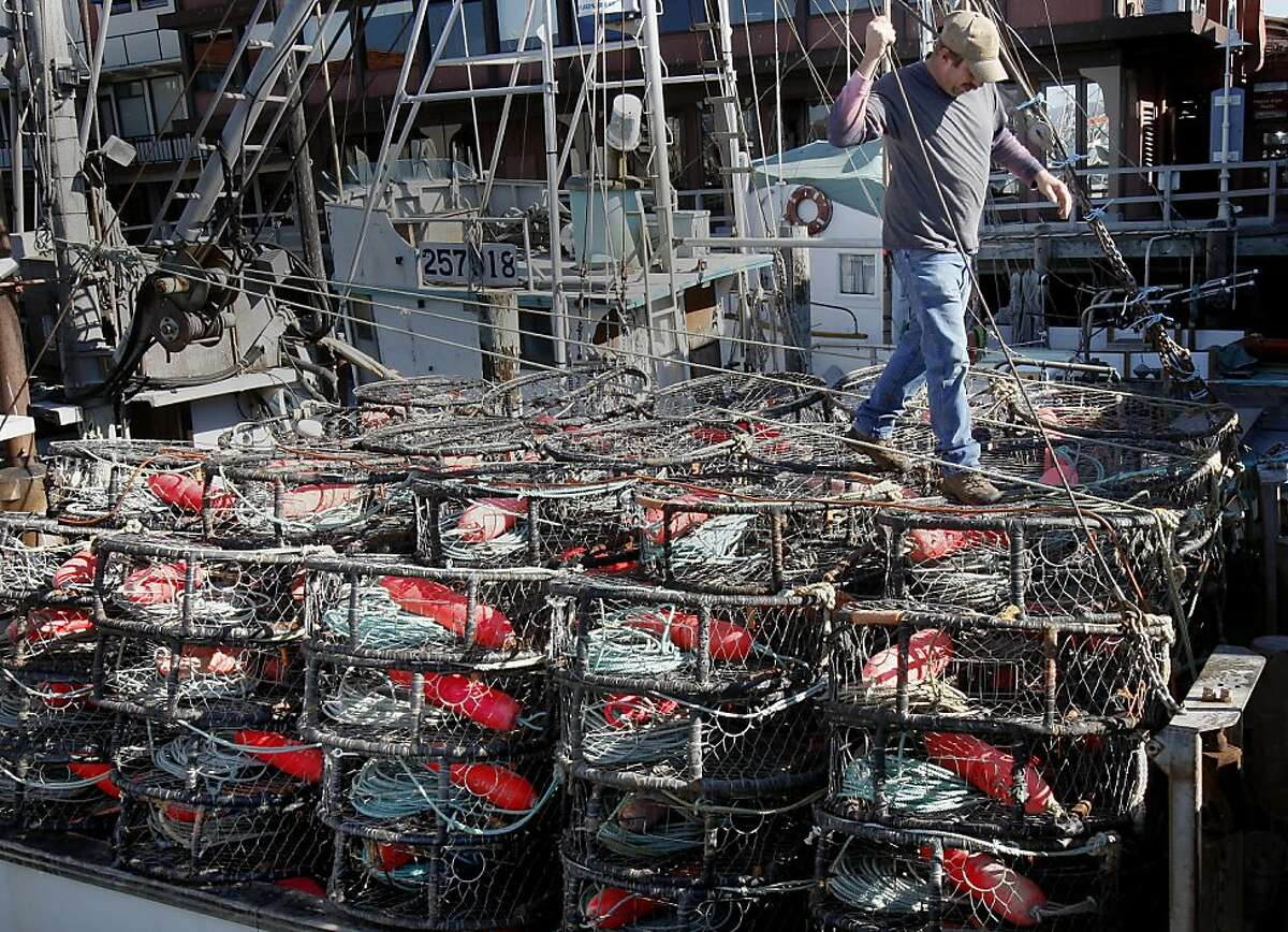 In his second year aboard the Linda Noelle, Ed Amato is optimistic about the crab season. At Fisherman's Wharf and Pier 45 in San Francisco, Calif., everyone is awaiting the opening of the commercial Dungeness crab season although early indications are the season won't be as good as last year.