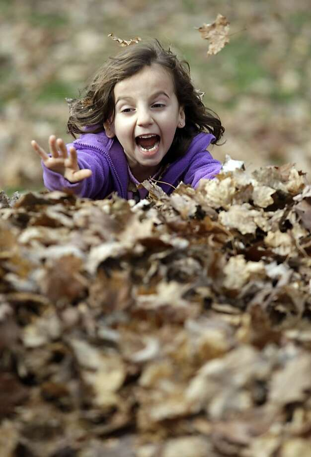 Martha Miller plays in a pile of leaves her father was raking for children to jump in during the warm windy weather in Akron, N.Y., Monday, Nov. 12, 2012. Photo: David Duprey, Associated Press