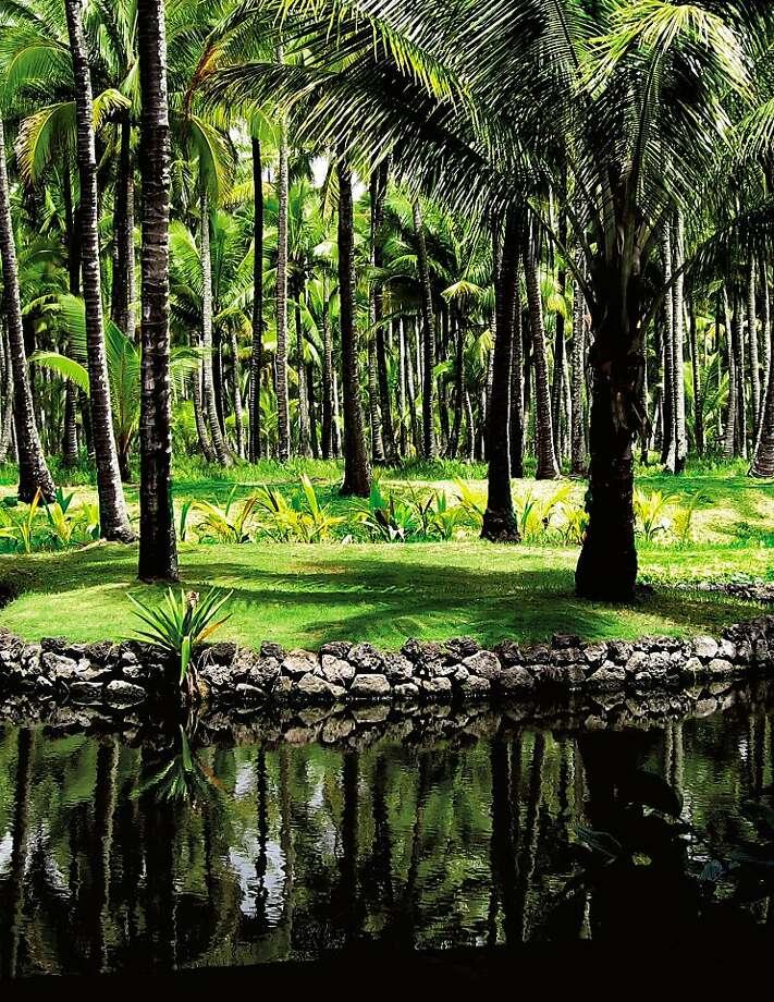 A vintage image of the old Coco Palms Resort Lagoon on Kauai. Photo: Sfc, SFC