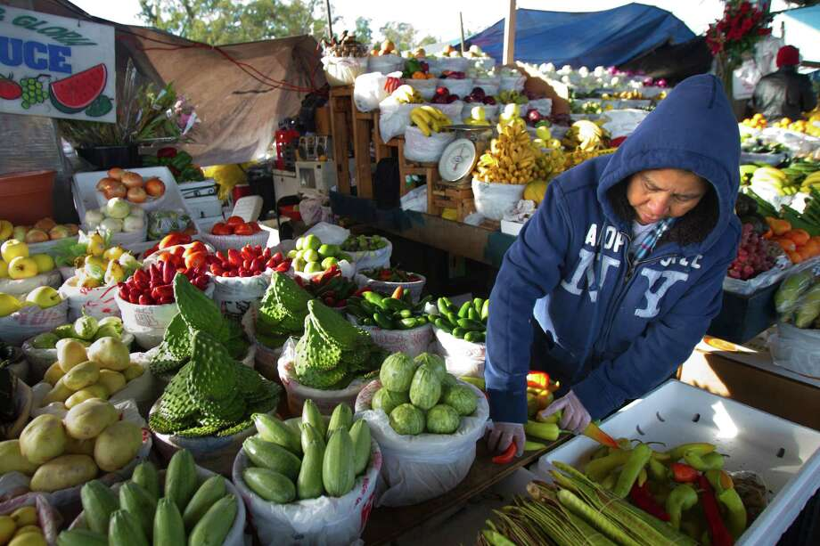 "Kathy Ortega adjusts produce at Canino Produce Co., on a cold and breezy morning Tuesday, Nov. 13, 2012, in Houston. Ortega said that it's very cold and she works for 10-12 hours a day. ""I don't like it, but, I have to do it,"" she said. Photo: Cody Duty, Houston Chronicle / © 2012 Houston Chronicle"