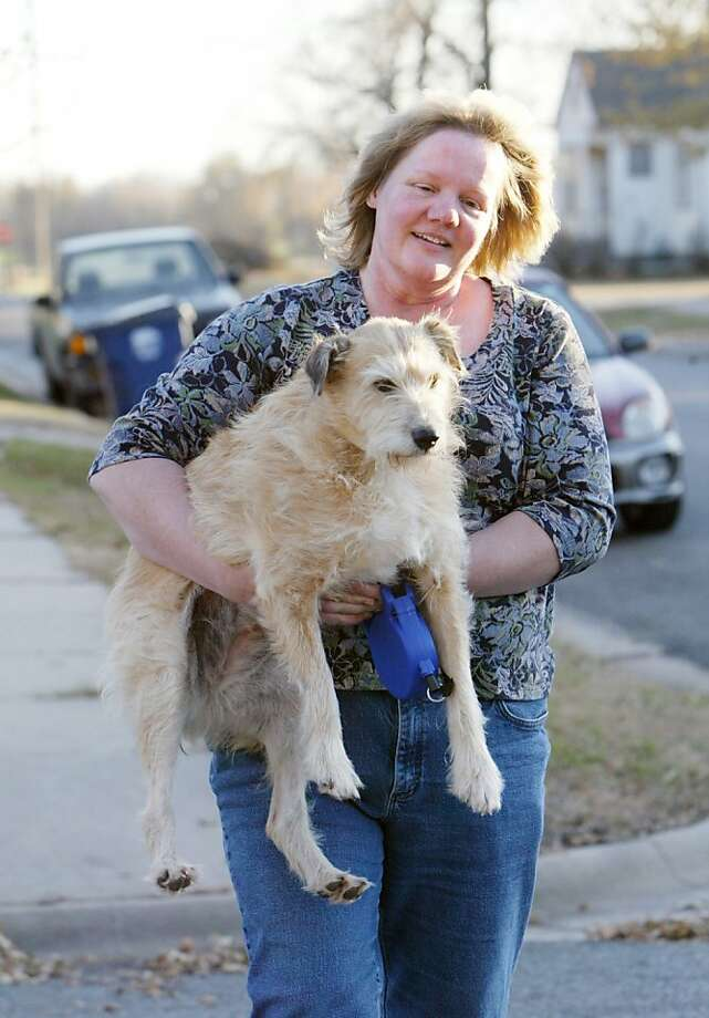 For D.D., suddenly there are rules:After living for years in a roadside ditch in Buhler, Kan., a stray named D.D. (for Ditch Dog) has found a new home with Rachelle Cavanaugh. Rachelle, who had to carry D.D. after she wandered into a busy street while on leash, says D.D. still has a lot to learn about heeling and other commands. Photo: Lindsey Bauman/The Hutchinson Ne, Associated Press