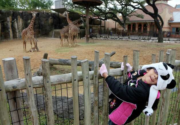 Do you like going to the Houston Zoo? Well, how about 38,461,538 ...