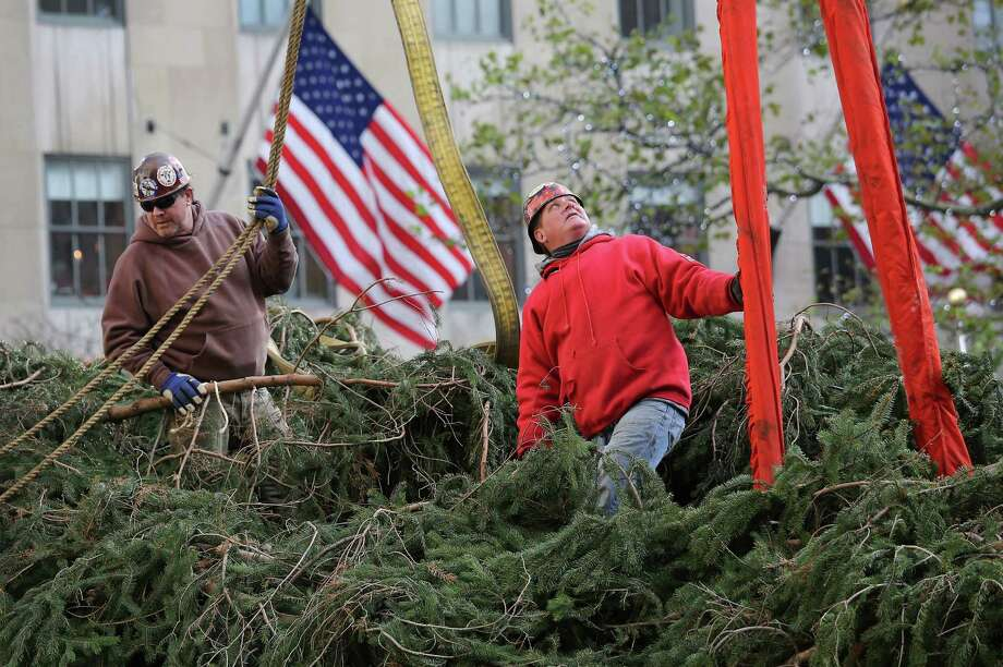 Workers prepare the Rockefeller Center Christmas tree before standing it up on November 14, 2012 in New York City. The tree, an 80-year old Norway Spruce, was donated by Joe Balku of Flanders, New Jersey. It weighs approximately 10 tons, measures 80 feet tall and is 50 feet in diameter. The official tree-lighting ceremony will be Wednesday, November 28. Photo: John Moore, Getty Images / 2012 Getty Images
