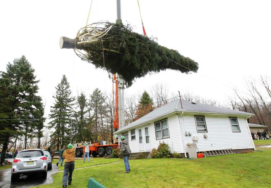 Crews use a crane to hoist a 80 ft. tall, 50 ft. diameter, 10-ton Norway Spruce tree from its base at the home of Joseph Balku in Flanders, N.J., Tuesday, Nov. 13, 2012. Photo: Rich Schultz, Associated Press / FR27227 AP
