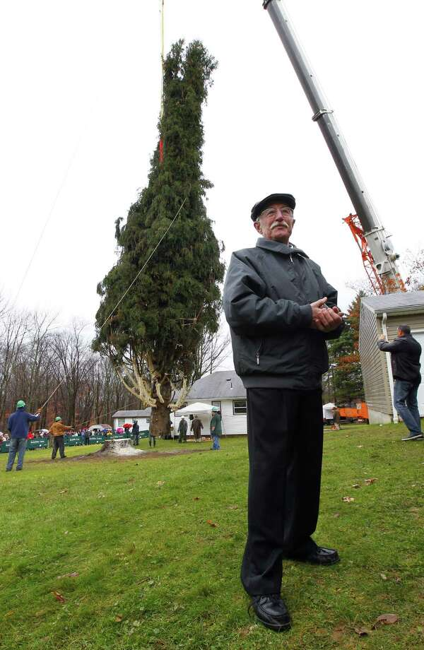 Joseph Balku stands near his 80 ft. tall, 50 ft. diameter, 10-ton Norway Spruce tree at his home in Flanders, N.J., Tuesday, Nov. 13, 2012. Crews lift the freshly cut tree that will be loaded onto a flatbed truck and transported to New York City for this years Rockefeller Center Christmas Tree. Photo: Rich Schultz, Associated Press / FR27227 AP