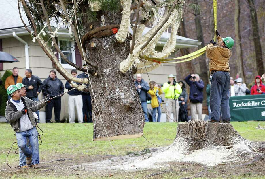 Crews use a crane to hoist a 80 ft. tall, 50 ft. diameter, 10-ton Norway Spruce tree from its base at the home of Joseph Balku in Flanders, N.J., Tuesday, Nov. 13, 2012. The tree will be laid onto a flatbed truck and transported to New York City where it will be this years Rockefeller Center Christmas Tree. Photo: Rich Schultz, Associated Press / FR27227 AP