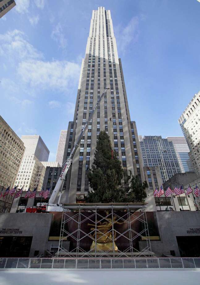 The 80th Rockefeller Center Christmas Tree is raised above the statue of Prometheus and the ice skating rink in New York's Rockefeller Center, Wednesday, Nov. 14, 2012. Photo: Richard Drew, Associated Press / AP
