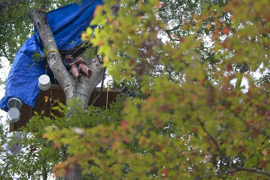Chickadee sits in a tree showing his opposition for TransCanada's Keystone XL project in Wood County Wednesday, Oct. 24, 2012, in Winnsboro. He said he was from the east coast and would only identify himself with the name Chickadee out of fear of a lawsuit from TransCanada. He has been in the trees for more than a month. (Cody Duty / Houston Chronicle) (Houston Chronicle)