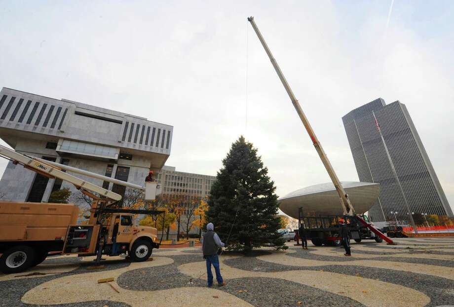 OGS grounds worker put up the Christmas tree at the Empire State Plaza in Albany, NY Friday Nov. 16, 2012. (Michael P. Farrell/Times Union) Photo: Michael P. Farrell