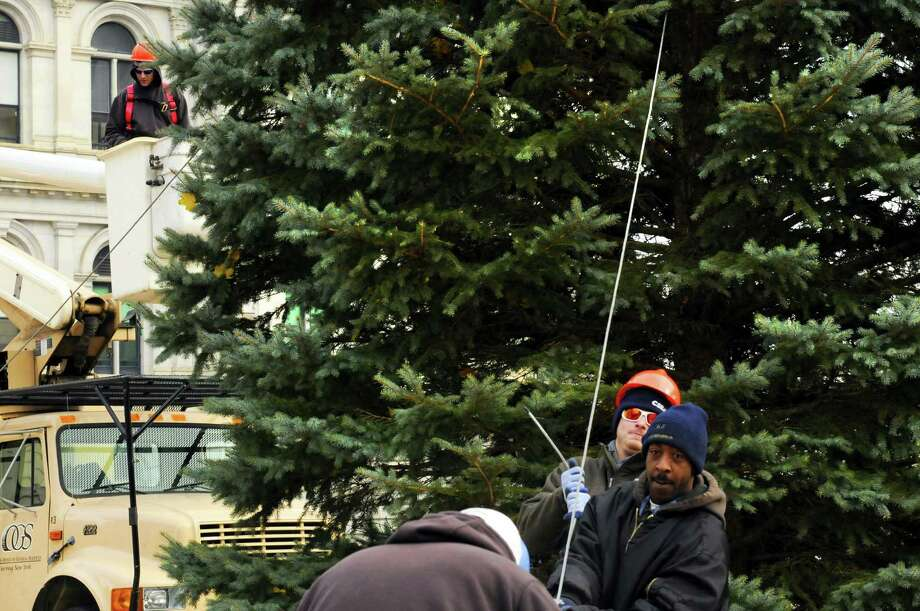 OGS grounds workers Juan Thomas and Nick Carnavale hold a tether line as the Christmas tree at the Empire State Plaza is put in place in Albany, NY Friday Nov. 16, 2012. (Michael P. Farrell/Times Union) Photo: Michael P. Farrell