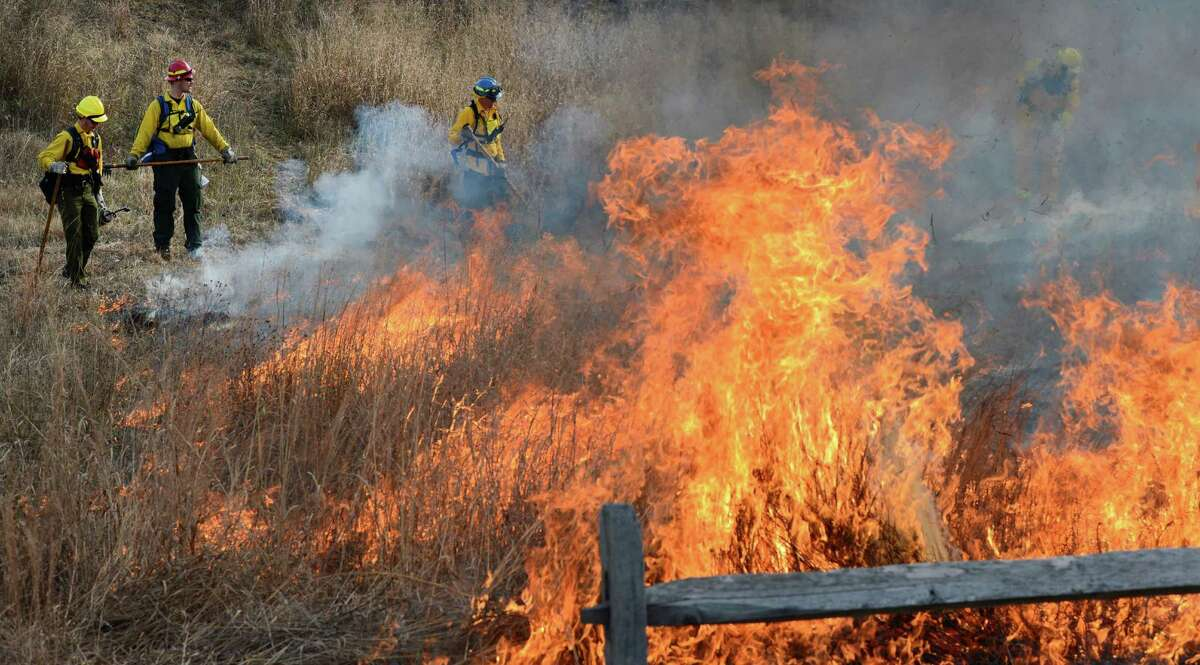 Controlled fires are set at the Pine Bush Preserve during a prescribed fire to burn off old fuel and revitalize the area in Albany, N.Y. Nov 16, 2012. (Skip Dickstein/Times Union)