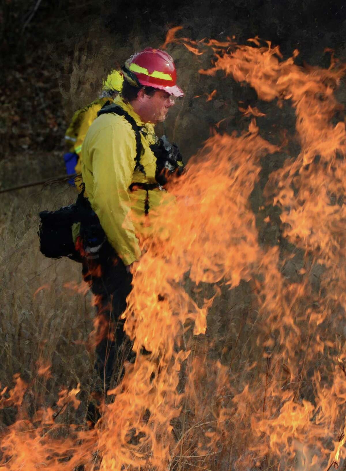 Fire Boss Joel Carlson is framed in flames as controlled fires are set at the Pine Bush Preserve during a prescribed fire to burn off old fuel and revitalize the area in Albany, N.Y. Nov 16, 2012. (Skip Dickstein/Times Union)