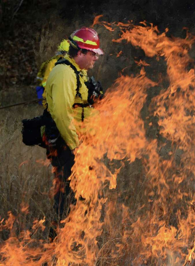 Fire Boss Joel Carlson is framed in flames as controlled fires are set at the Pine Bush Preserve during a prescribed fire to burn off old fuel and revitalize the area in Albany, N.Y. Nov 16, 2012.  (Skip Dickstein/Times Union) Photo: Skip Dickstein / 00020156A