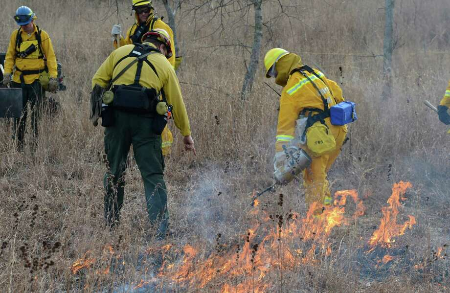 Amanda Dillon, Field Ecologist/Environmental Educator, foreground,  under the watchful eye of Fire Boss Joel Carlson starts a back fire at the Pine Bush Preserve during a prescribed fire to burn off old fuel and revitalize the area in Albany, N.Y. Nov 16, 2012.  (Skip Dickstein/Times Union) Photo: Skip Dickstein / 00020156A