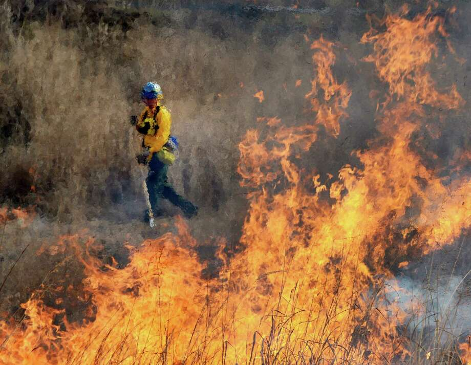 A firefighter keeps a close eye on a back fire at the Pine Bush Preserve during a prescribed fire to burn off old fuel and revitalize the area in Albany, N.Y. Nov 16, 2012.  (Skip Dickstein/Times Union) Photo: Skip Dickstein / 00020156A