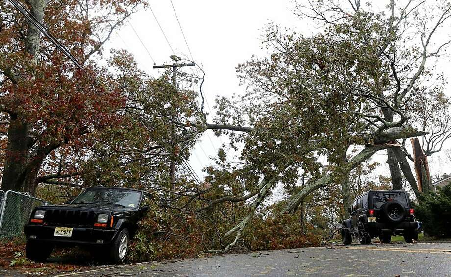A downed tree clogs a road in Brick, N.J. New Jersey utilities reported more than 113,000 destroyed or damaged trees. Photo: Julio Cortez, Associated Press