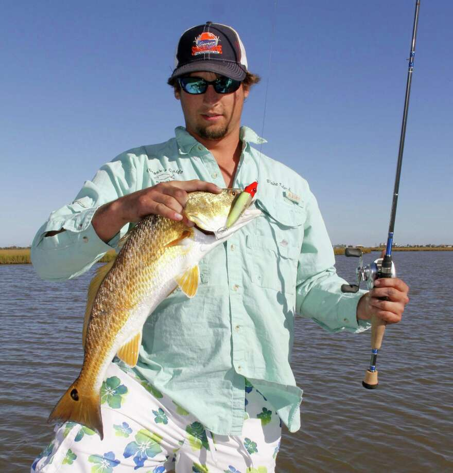 While live shrimp, or jigs tipped with Gulp! tails, are the most common bait offered to shallow-water redfish schools, Blain Talasek used a topwater plug to draw a strike from this Matagorda Bay red. Photo: Picasa