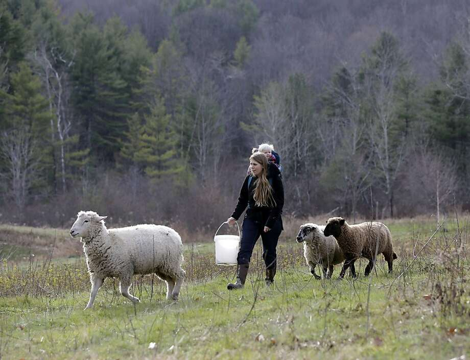 In this Thursday, Nov. 15, 2012 photo, Schuyler Gail and her daughter Tillie walk with sheep at the family's Climbing Tree Farm in New Lebanon, N.Y. When Schuyler and husband Colby Gail were trying to get started in farming, they ran into an obstacle common to many fledgling farmers: Land was costly and hard to find. They turned to a local land conservancy, which matched them up with a landowner willing to sell for an affordable price. (AP Photo/Mike Groll) Photo: Mike Groll, Associated Press