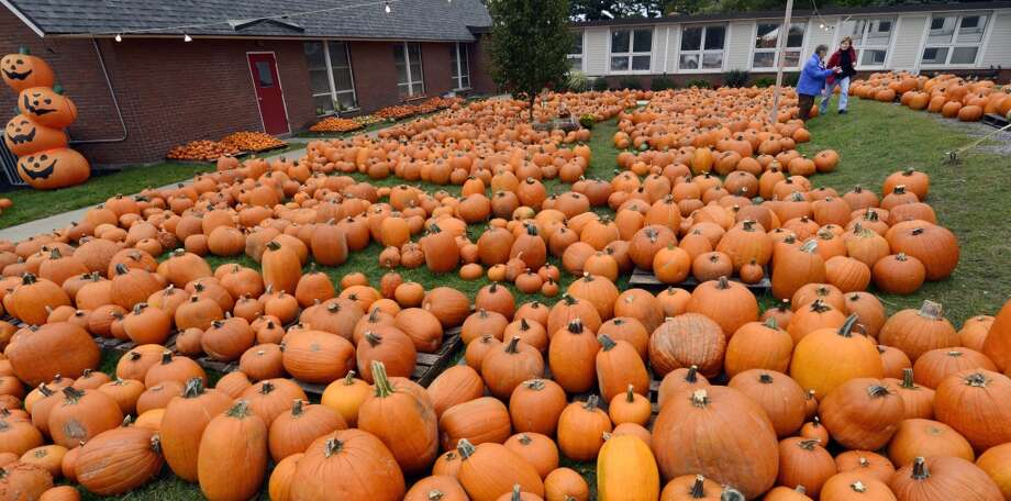 1.1 billion pounds: Total production of pumpkins in the major pumpkin-producing states in 2011. (Albany Times Union)
