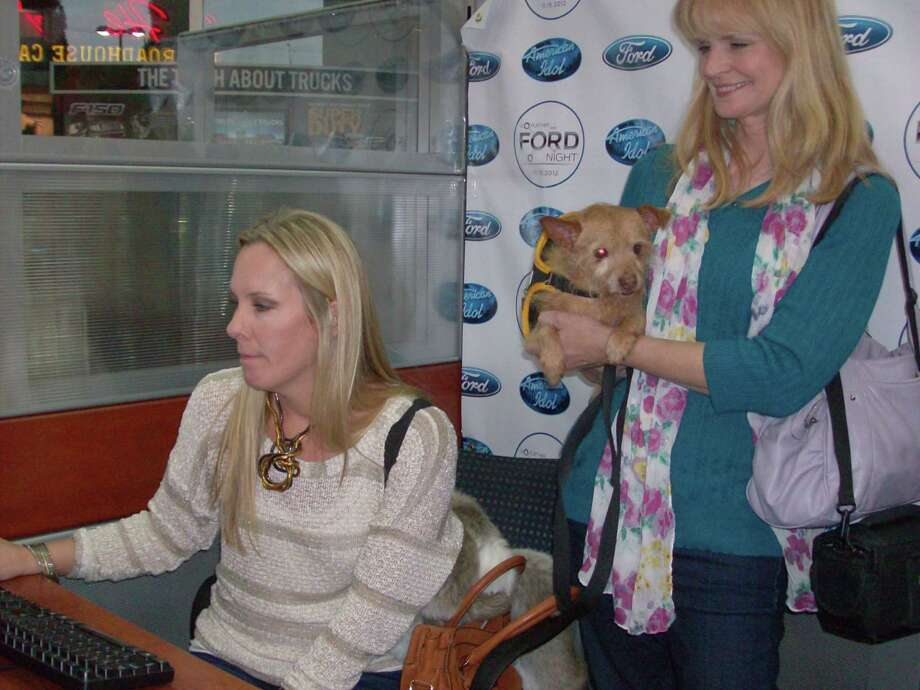 "Jennifer Meister auditions as an ""American Idol"" judge while Lisa Connolly, of Homes For Pets, watch her attempt. Photo: Michele Gwynn / For The NE Heral"