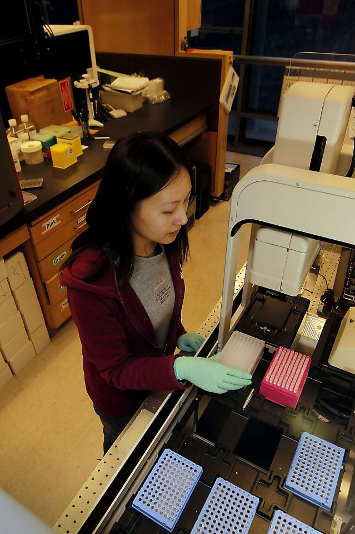 Research associate Eunice Wan on an Automation Workstation where much of the data was collected, in San Francisco, Ca. on Friday Nov. 16, 2012. Researchers at Kaiser Hospital and UCSF Medical Center have been working together on a project to do analysis on more than 100,000 Northern California members, have announced the first results of their work and found some pretty fascinating genetic results for everything from cholesterol and drug reaction to height and autism.