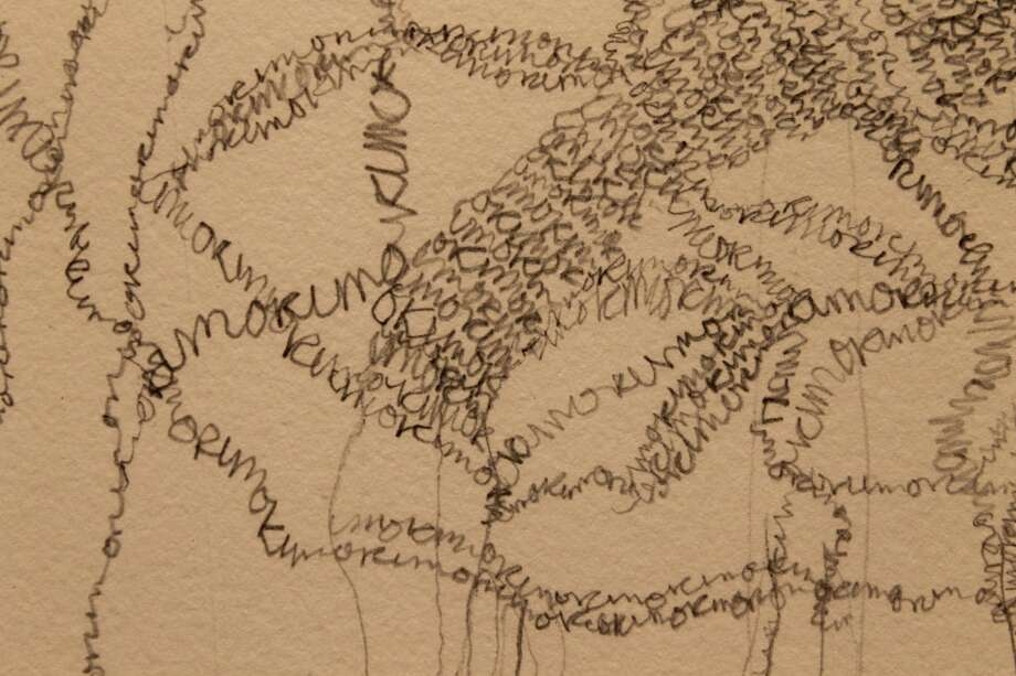 "Detail of a drawing by  Gina Occhiogrosso in the ""Grey Matters"" exhibition in Concourse A at Albany International Airport."