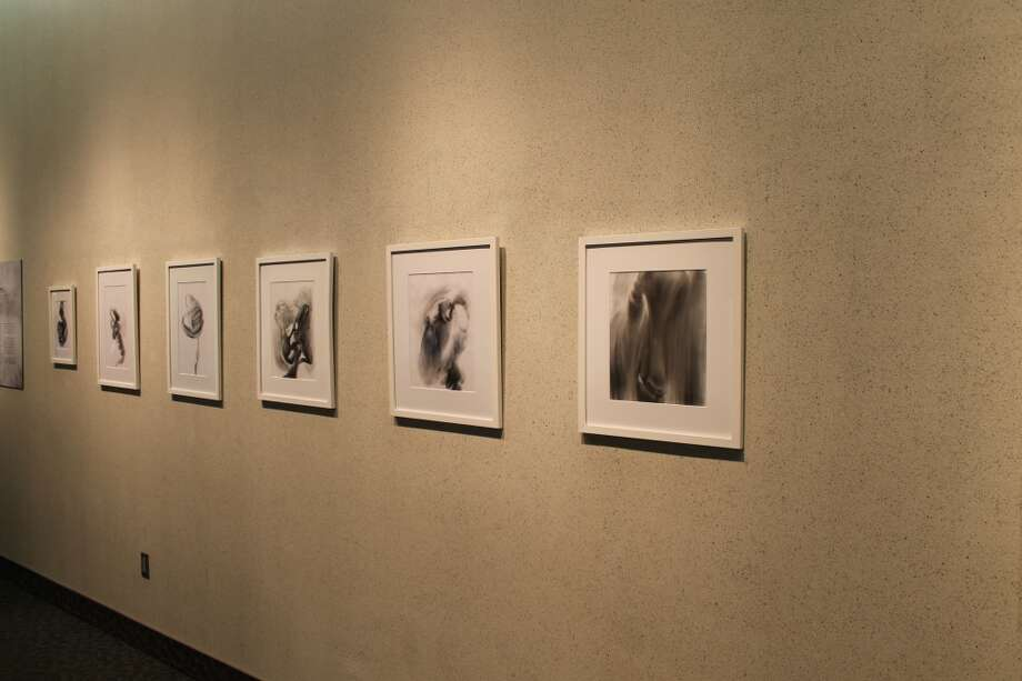 "Drawings by Deborah Zlotsky in the ""Grey Matters"" exhibition in Concourse A at Albany International Airport."