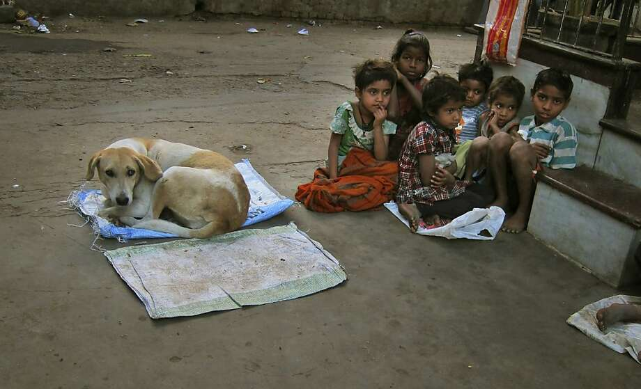 No one wants to sit next to the dog? Poor Indian children wait for free food distributed outside a Hindu temple in New Delhi. Photo: R S Iyer, Associated Press