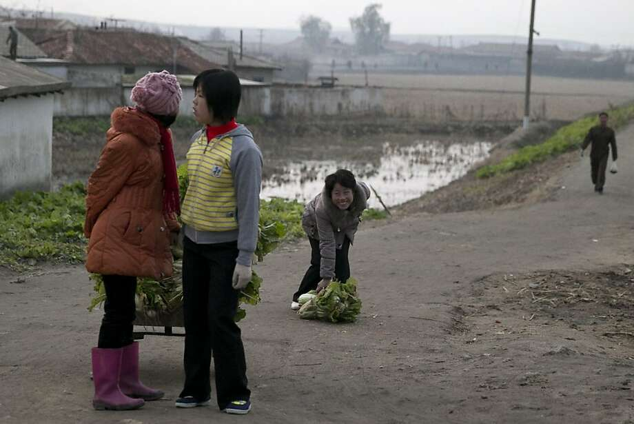Excuse me, is this your head? A woman retrieves a cabbage that dropped from a cart near Mount Kuwole, North Korea. Photo: Ng Han Guan, Associated Press