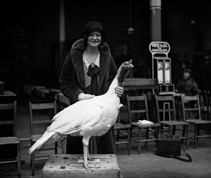 Actress Enid Sass poses with a white turkey at the International Show in Crystal Palace, London, on