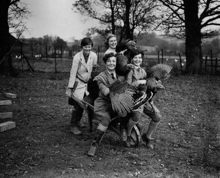Young people and turkeys are pictured on a poultry farm in Hertfordshire, U.K., on Nov. 23, 1929. Photo: Puttnam, Getty Images / Hulton Archive