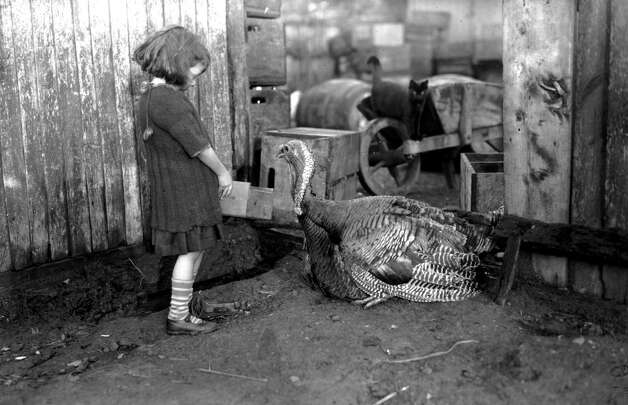 A girl feeds a turkey on a farm in January 1923. Photo: Topical Press Agency, Getty Images / Hulton Archive