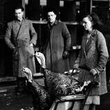 A woman takes her Christmas turkeys home in a baby carriage on Dec. 14, 1940 in London.