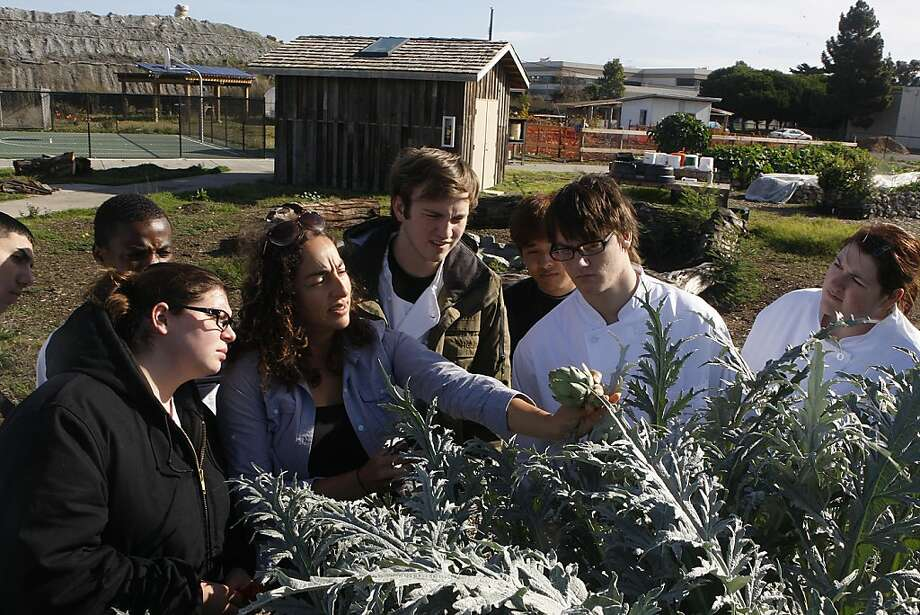 Urban farm coordinator Corey Black (center) shows artichokes grown at the Treasure Island farm to Job Corps culinary students. Such efforts are among food advocacy groups pushing for political change. Photo: Liz Hafalia, The Chronicle