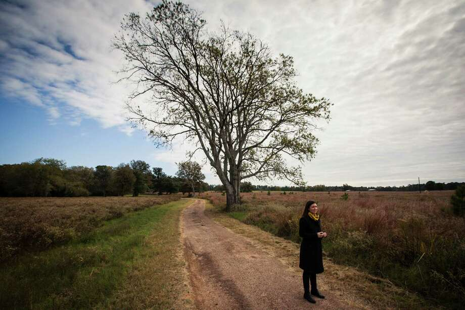 Sarah Mitchell, executive director of the Cook's Branch Conservancy, stands in the 5,650 acres in Montgomery County north of Houston, Wednesday, Nov. 14, 2012, in Montgomery.  Operated as a program of the Cynthia and George Mitchell Foundation, Cook's Branch Conservancy offers a rare glimpse into what nearly a century of regeneration looks like in the Pineywoods region of East Texas. Photo: Michael Paulsen, Houston Chronicle / © 2012 Houston Chronicle