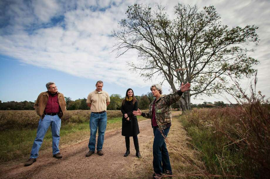 Linda Campbell, right, talks as Joe Hamrick, left to right, Eric Keith and Sarah Mitchell, executive director of the Cook's Branch Conservancy, look on while at the 5,650 acres in Montgomery County north of Houston, Wednesday, Nov. 14, 2012, in Montgomery.  Operated as a program of the Cynthia and George Mitchell Foundation, Cook's Branch Conservancy offers a rare glimpse into what nearly a century of regeneration looks like in the Pineywoods region of East Texas. Photo: Michael Paulsen, Houston Chronicle / © 2012 Houston Chronicle