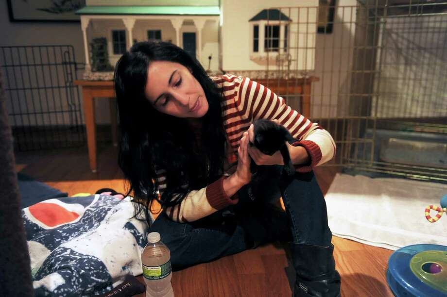Tamara Garabedian, of Port Chester, N.Y., holds a kitten that was rescued along with its four siblings in the days after Superstorm Sandy with the help of Allyson Halm, of Greenwich-based Adopt-A-Dog. The kittens, shown here at Halm's home in Stamford, Conn., Wednesday, Nov. 21, 2012, were treated at Just Cats in Stamford. Photo: Helen Neafsey / Greenwich Time