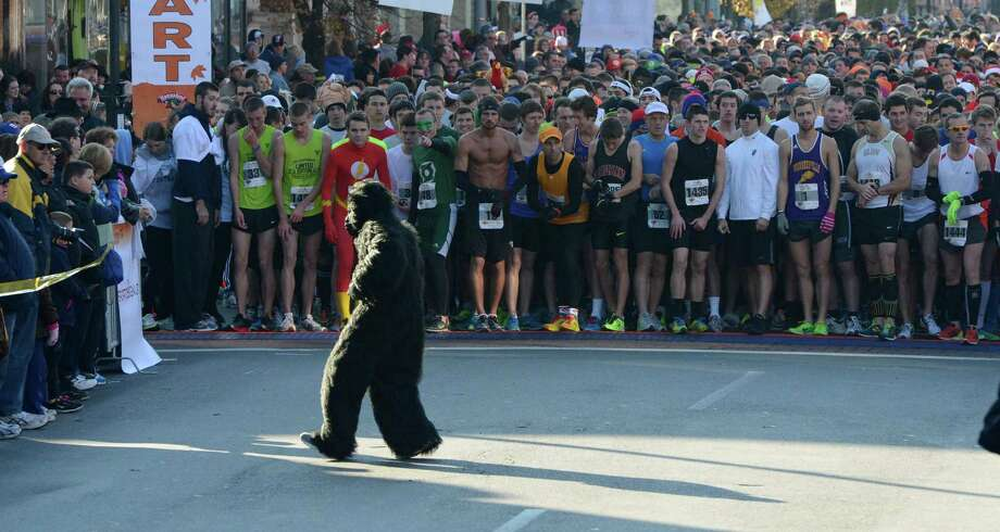 A person in a gorilla costume avoids the starters in the 65th running of the Troy Turkey Trot in Troy, N.Y. Nov 22, 2012.     (Skip Dickstein/Times Union) Photo: Skip Dickstein / 00020181A