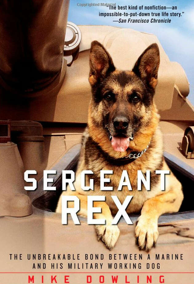 "Rex, a dog working with the Marines in the ""Triangle of Death"" in Iraq, came home to have his tale told by his handler. (Photo: Atria Books.)"