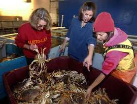 Sisters Mary Ann Shepherd, Angela Cincotta and Annette Traverso (L to R) sort through a bin of Dungeness crabs at the family-owned Alioto-Lazio Fish Company in San Francisco, Calif., on Friday, Nov. 19, 2010. The family has run the business since their grandfather Tom Lazio co-founded the company with Frank Alioto more than 50 years ago.