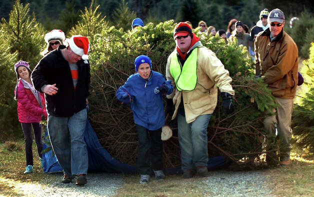 The Reid family, of Darien, with some help from employee Michael Glynn, wearing vest, transport their tree down to their car while at at Jones Family Farm in Shelton, Conn. on Saturday November 24, 2012. In the photo from left to right is Brigitte Reid, 5, Chris McIntyre, John Reid, 11, employee Michael Glynn, and Doug Reid. Photo: Christian Abraham / Connecticut Post