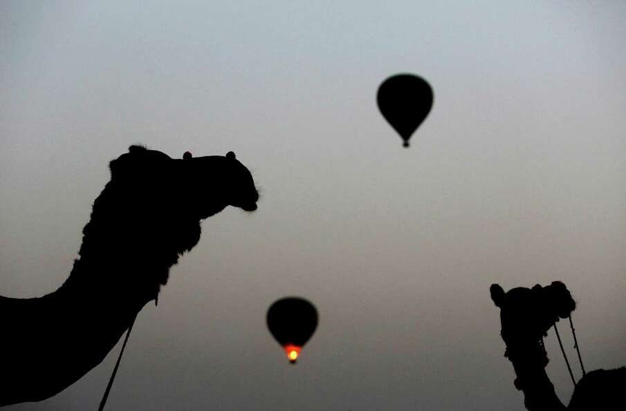 Camels and hot air balloons taking off are silhouetted against the darkening sky at the annual Pushk