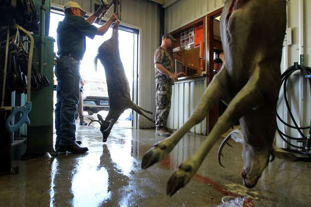 The taxidermist's son, Micah Jahns (ck) prepares animals for for processing at Eddie's Game Processing, Sunday, November 18, 2012. Photo: JENNIFER WHITNEY / © Jennifer Whitney