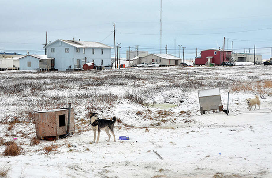 A dog is tethered to his doghouse in Nuiqsut, Alaska. (Jennifer A. Dlouhy / The Houston Chronicle)